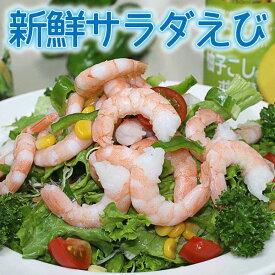 新鮮サラダえび 冷凍食品 食品 業務用 家庭用 ご飯のお供 魚介