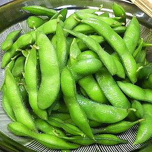 枝豆 冷凍枝豆【500g枝豆/おつまみ】 業務用 家庭用 ご飯のお供 ニッスイ