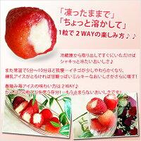 春摘み苺アイス[fb-1]送料無料
