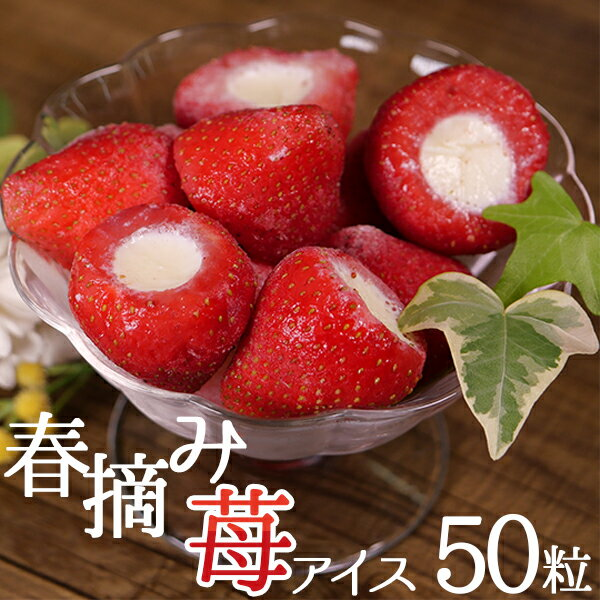 アイスクリーム 業務用 イチゴアイス 春摘み苺アイス【20g×50粒 いちごアイス】