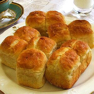食パン ミニ食パン 【40g×10個】 業務用 家庭用 国産 食べ物