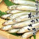 国産 冷凍 ワカサギ 滋賀県 わかさぎ (10〜11cm 約50尾) 琵琶湖産