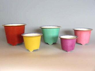 ◆ Qing Yohei third Huisheng mountain made ◆ bonsai '5 colors set down round'