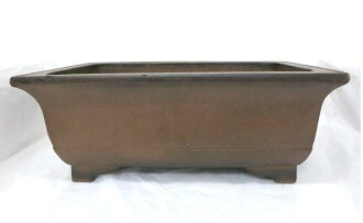 Bonsai ◆ old purple mud outer subtidal cardboard legs who ◆ rectangular Bowl