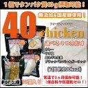 40chicken (10個入り)【サラダチキン】【フォーティーチキン】【40チキン】