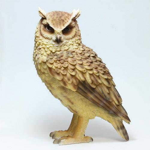 ■ PET BANK LONGEARED OWL (ペット バンク トラフズク) 【AS】