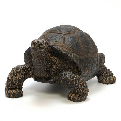 PET BANK TORTOISE (ペット バンク トータス カメ) 【AS】