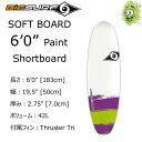 """BIC SURF ビック サーフボード 6'0"""" PAINT Shortboard ショートボード ソフトボード"""