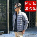ダウンジャケット メンズ ライトダウン 軽量 大きいサイズ メンズ アウター M L LL 3L 4L 5L 薄手 防寒 ダウン ブルゾン ジャケット カジュアル 秋冬 送料無料 9504