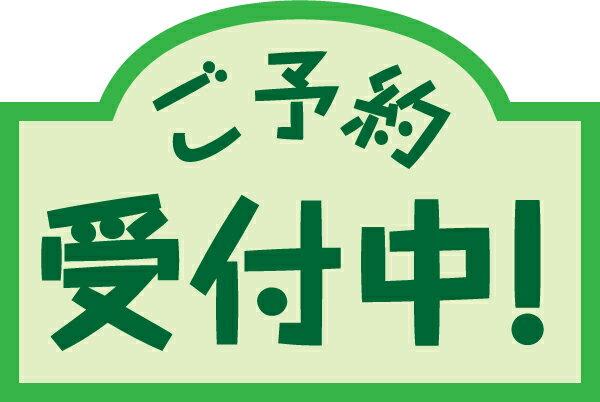 【9月予約】 けものフレンズ ちょびるめぷち キンシコウ・ヒグマ 2種セット ※代引き不可 9月25日入荷予定