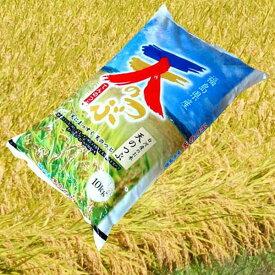 おすすめ 天のつぶ 米屋仕立て白米10kg 天の粒(厳選希少米)30年度米 福島県オリジナル品種 おすすめ