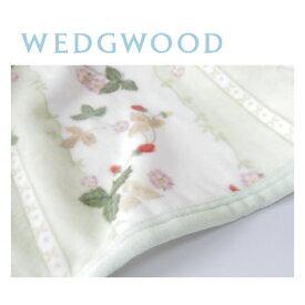 西川 ウェッジウッド WEDGWOOD 綿毛布(毛羽部分) シングル 140×200cm ワイルドストロベリー 日本製/グリーン FQ07101000