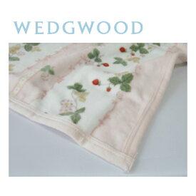 西川 ウェッジウッド WEDGWOOD 綿毛布(毛羽部分) シングル 140×200cm ワイルドストロベリー 日本製/ピンク FQ07101000