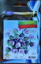 メール便利用で送料無料!紫マクワプロ(タイ丸小ナス)種・タイ野菜
