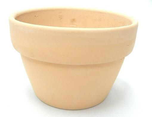 素焼き鉢 5.0号 α型 アルファ 中深 6枚セット 洋蘭 カトレア 原種 植木鉢 鉢 蘭 らん ラン  園芸