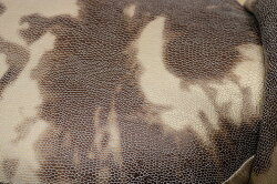 アニマルスツールトリケラトプス座れるイススツール1Pスツールオットマン恐竜サイドテーブル足置きイスチェアコンパクトインテリア