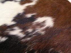 【保証付き】ル・コルビジェLC4シェーズロングスタンダードレザーkaw-sf3009sl北欧送料無料クーポンプレゼント通販NP後払い新生活オススメ%offジェンコ【RCP】北欧モダンインテリアナチュラルテイストイスオフィスデスクチェア