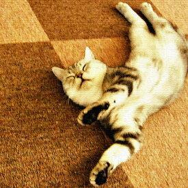 猫 アートパネル ANIMAL Lサイズ 57cm×57cm lib-4122828s3送料無料 北欧 モダン 家具 インテリア ナチュラル テイスト 新生活 オススメ おしゃれ 後払い 雑貨