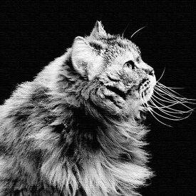 猫 アートパネル ANIMAL Mサイズ 30cm×30cm lib-4122834s1送料無料 北欧 モダン 家具 インテリア ナチュラル テイスト 新生活 オススメ おしゃれ 後払い 雑貨