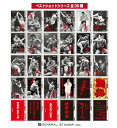 【全30種セット】 アントニオ猪木X東スポ ベストショットシリーズ ステッカー まとめ買い 大人買い 秘蔵写真 記念 猪…