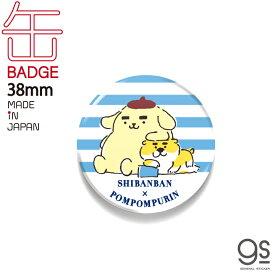 しばんばんxポムポムプリン 38mm缶バッジ ボーダー キャラクター缶バッジ サンリオ コラボ イラスト かわいい 人気 柴犬 いぬ LCB423 gs 公式グッズ