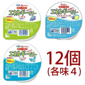 [バラエティ] ハウス エネルギーゼリー 12個(3種各味4)巨峰 はちみつレモン ラムネ 砂糖不使用 区分3