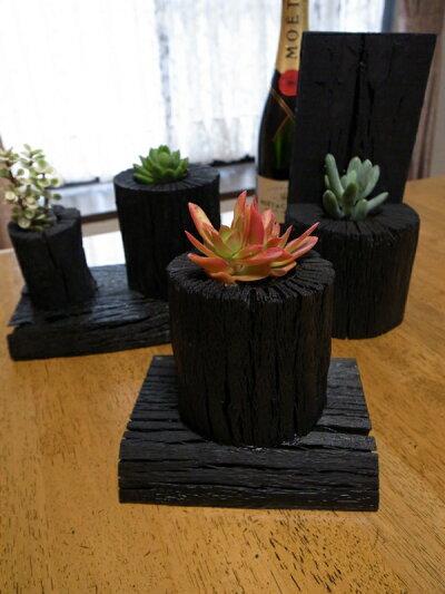 炭スタンド・L多肉植物サボテン類の植え込みに最適な炭でできた鉢販売通販種類