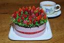 母の日ギフト ケイトウお花のキャンドルケーキ!もちろん全て生きたお花です♪【鉢花】【花】【ギフト】【誕生日】【プレゼント】【寄せ植え】【フラワーケーキ】【ケーキ】