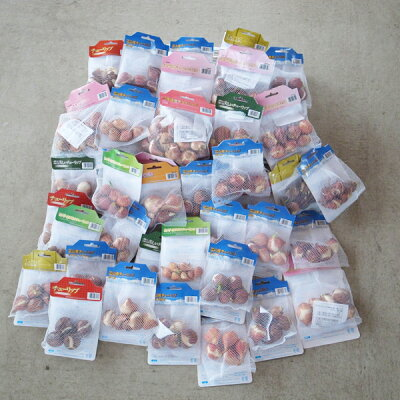 チューリップ球根220球福袋送料無料!どどーんと!超特盛!なんと全て絵袋詰めのチューリップオランダ産、富山産の最高級品質