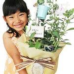 実付きブルーベリー鉢植え父の日ギフトラッピング付きメッセージカード付き収穫バスケット付き販売通販種類