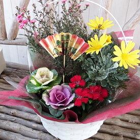 花 フラワー 寄せ植え アレンジ フラワー 誕生日プレゼント 福袋 花ふらわー 季節の寄せ植えフラワーギフト 送料無料 Flower gift ギフト たんじょうびプレゼント はな ぷれぜんと ぎふと 寄植えフラワー