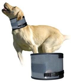 バイトフリーカラー (バイトノットカラー・エリザベスカラー) 大型犬 小型犬 介護用品 5000円(税抜)以上送料無料!