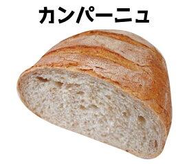 【1本サイズ】パン・ド・カンパーニュ