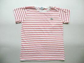 子供80's■USA製LACOSTEラコステボーダーTシャツ(M)キッズIZOD