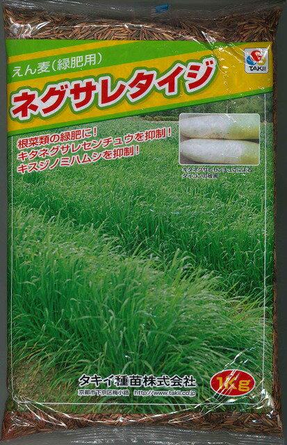 緑肥 えん麦ネグサレタイジ 1kgタキイ種苗