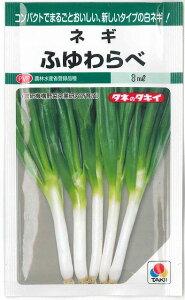 ねぎふゆわらべ 5ml タキイ種苗