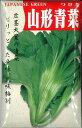 山形青菜 20ml トキタ種苗