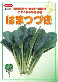野菜種小松菜はまつづき2dlサカタのタネ