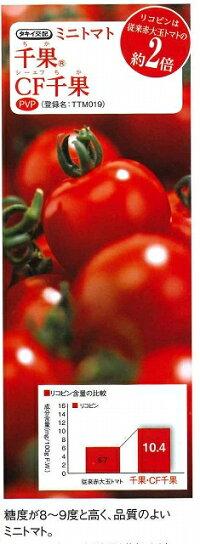 1割引き!野菜種ミニトマトCF千果18粒タキイ交配