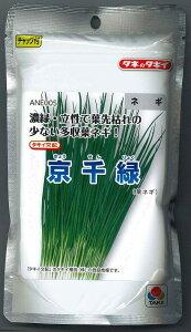 ねぎ京千緑 2dl タキイ種苗