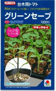 台木 グリーンセーブ1000粒(トマト用)タキイ交配