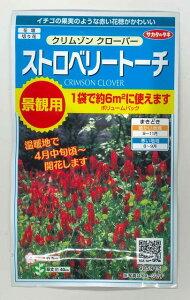 花種 ストロベリー トーチクリムゾンクローバー30gサカタのタネ実咲
