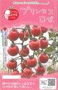 マウロの地中海トマトプリンセスロゼ8粒