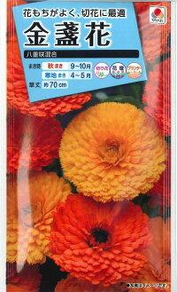 花の種オール1割引き!金盞花八重咲き混合3mlタキイ種苗
