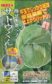 キャベツ極甘キャベツサトウくん 40粒ナント種苗