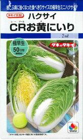 白菜CRお黄にいり 2mlタキイ交配