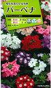 花の種バーベナ オブセッションタキイ交配