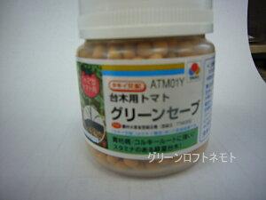 台木 グリーンセーブ2L ペレット種子1000粒(トマト用)タキイ交配