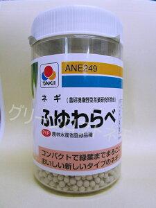ねぎふゆわらべ ペレット2L 5千粒 タキイ種苗