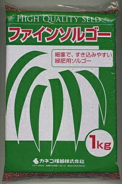 緑肥ソルガム ファインソルゴー(イネ科)1kgカネコ種苗株式会社